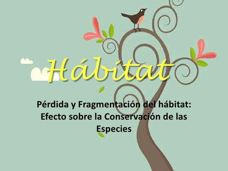 Hábitat<br />Pérdida y Fragmentación del hábitat: Efecto sobre la Conservación de las Especies<br />