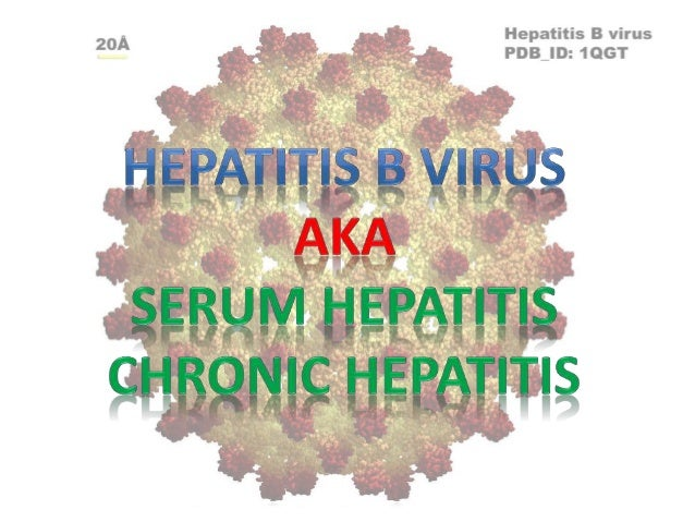 Hepatitis B/ Chronic Hepatitis/Serum Hepatitis