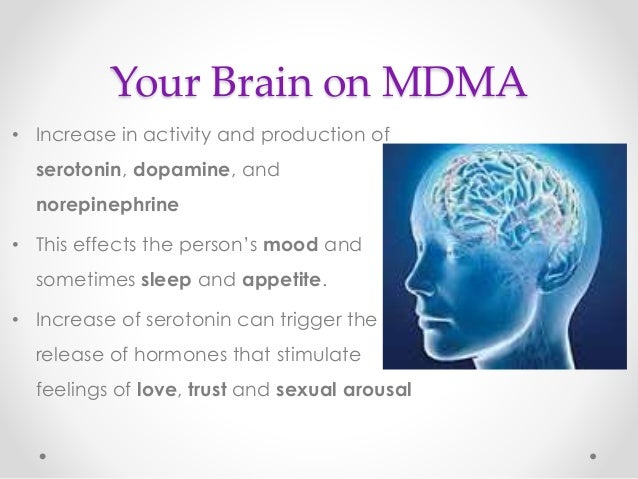 a study on the effects of mdma on the brain The purpose of this study is to measure the effects of mdma on sleep, mood, thinking, and how your body retains water the researchers are interested in the effects that occur a few hours after taking mdma as well as effects occurring over the next two days we will study these effects in a .