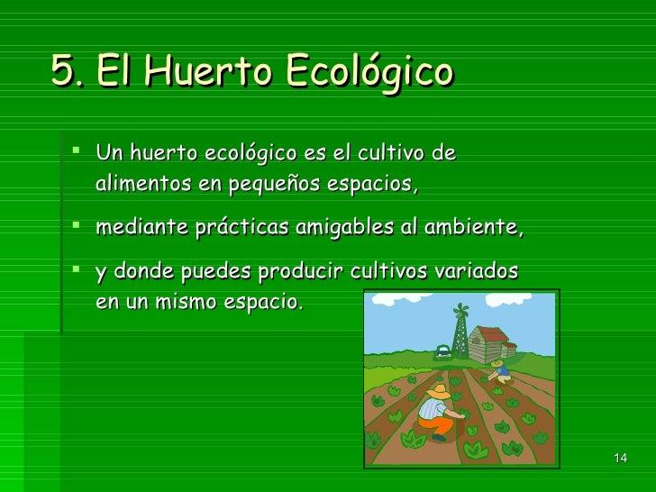 5. El Huerto Ecológico <ul><li>Un huerto ecológico es el cultivo de alimentos en pequeños espacios, </li></ul><ul><li>medi...