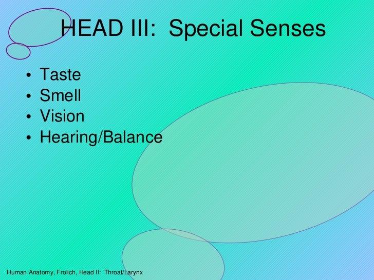 HEAD III:  Special Senses <ul><li>Taste </li></ul><ul><li>Smell </li></ul><ul><li>Vision </li></ul><ul><li>Hearing/Balance...