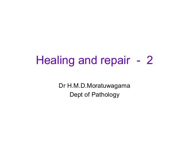 Healing and repair   specialized tissue- 3
