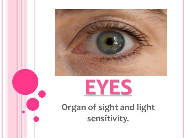 EYESOrgan of sight and light      sensitivity.