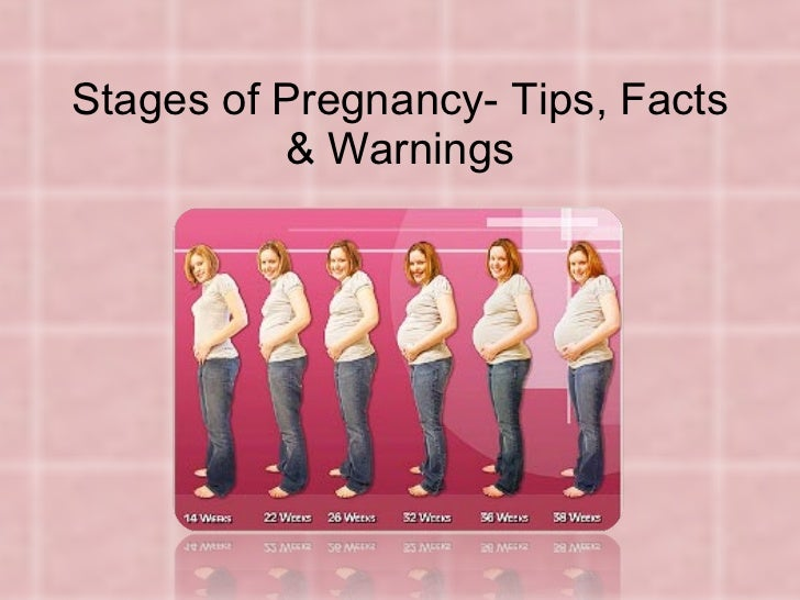 Stages of Pregnancy- Tips, Facts & Warnings