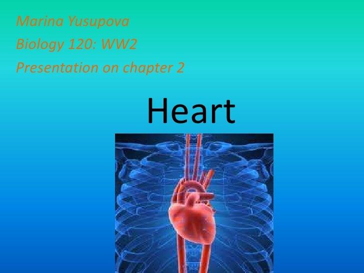 Marina Yusupova<br />Biology 120: WW2<br />Presentation on chapter 2<br />Heart<br />