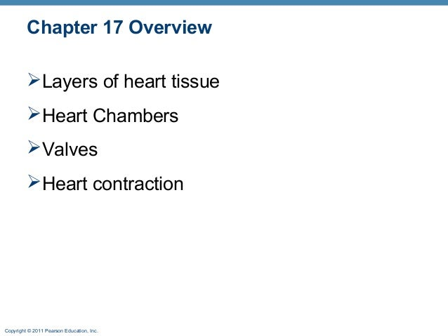 Chapter 17 Overview Layers of heart tissue Heart Chambers Valves Heart contraction  Copyright © 2011 Pearson Education...