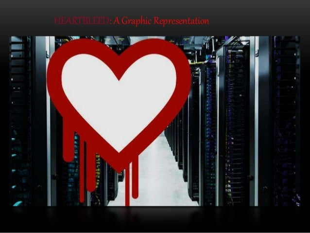 HEARTBLEED: A Graphic Representation