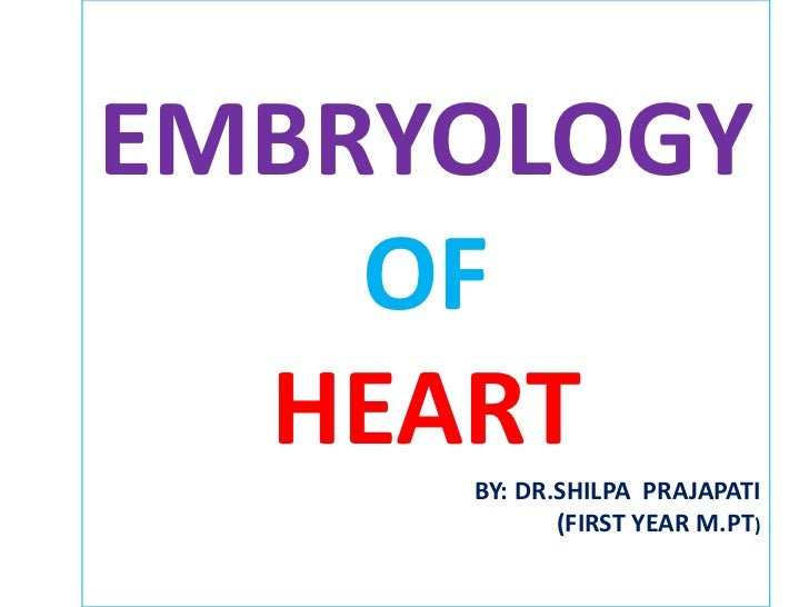 Heart embryology
