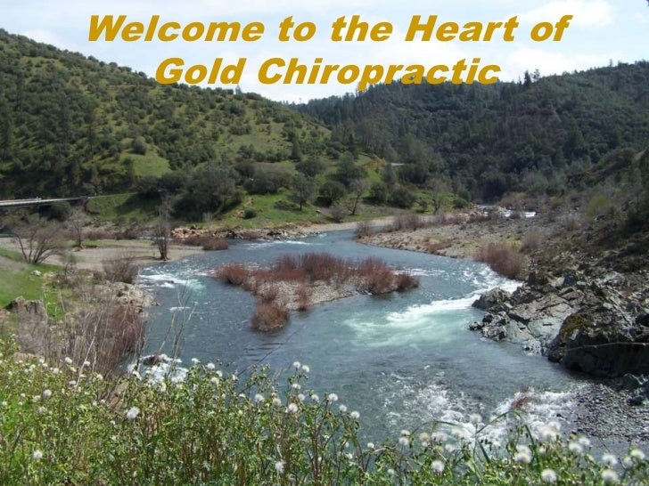 Welcome to the Heart of   Gold Chiropractic