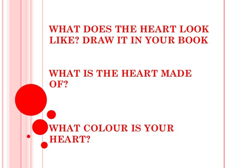 WHAT DOES THE HEART LOOK LIKE? DRAW IT IN YOUR BOOK WHAT IS THE HEART MADE OF?  WHAT COLOUR IS YOUR HEART?