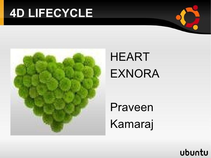 4D LIFECYCLE <ul>HEART EXNORA Praveen Kamaraj </ul>