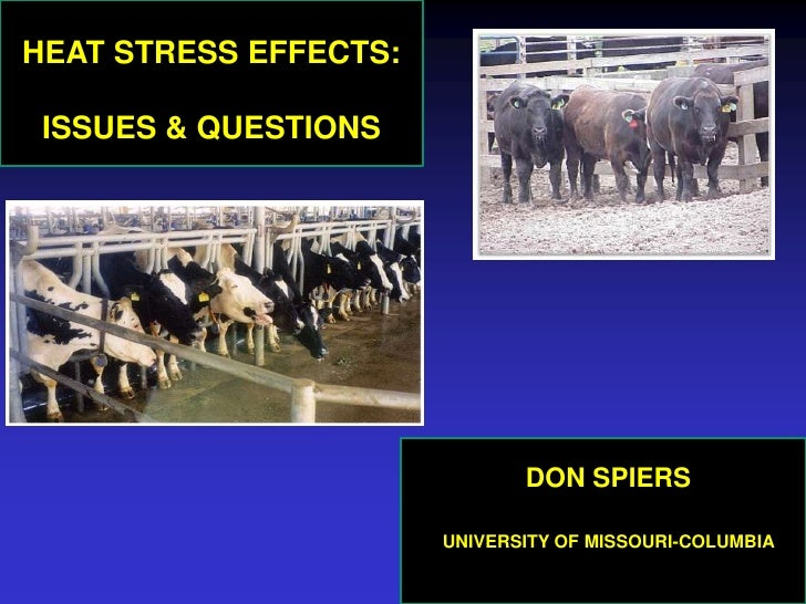 HEAT STRESS EFFECTS: ISSUES & QUESTIONS                              DON SPIERS                       UNIVERSITY OF MISSOU...
