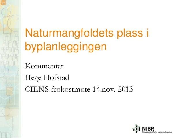 Hege Hofstad på CIENS-frokost 14. november 2013