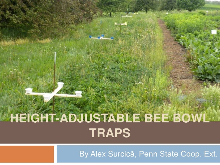Height adjustable bee bowltraps