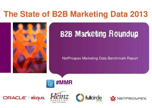 The State of B2B Marketing Data 2013   Place image here                       NetProspex Marketing Data Benchmark Report  ...