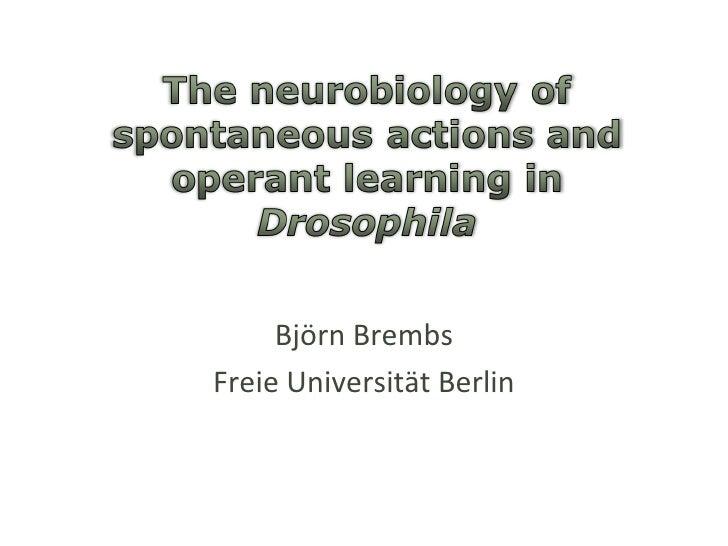 Björn Brembs Freie Universität Berlin