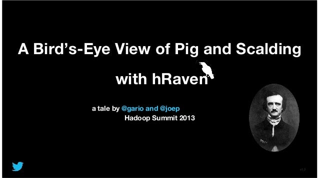 A Bird's-Eye View of Pig and Scalding with hRaven a tale by @gario and @joep Hadoop Summit 2013 v1.2