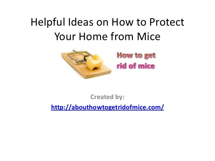 Helpful Ideas on How to Protect    Your Home from Mice                Created by:    http://abouthowtogetridofmice.com/