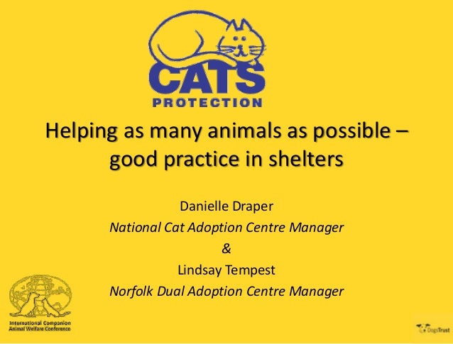 Helping as many animals as possible – good practice in shelters Danielle Draper National Cat Adoption Centre Manager & Lin...