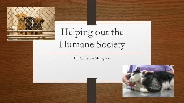 Helping out the Humane Society By: Christine Mongrain