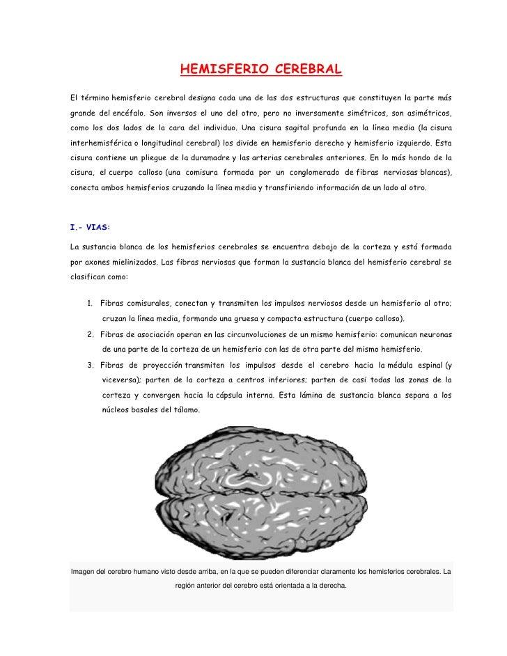 HEMISFERIO CEREBRALEl término hemisferio cerebral designa cada una de las dos estructuras que constituyen la parte másgran...