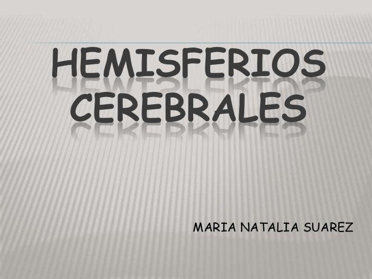 HEMISFERIOSCEREBRALES<br />MARIA NATALIA SUAREZ<br />