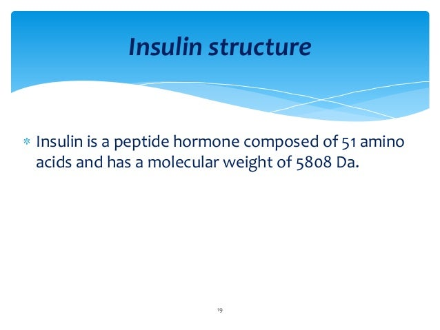 insulin sythesis Insulin stimulated the synthesis of total cell protein, histone and dna in these  cells in contrast to an early response of protein synthesis to insulin, synthesis of.