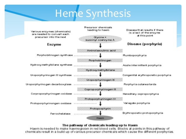 Heme metabolism disorders