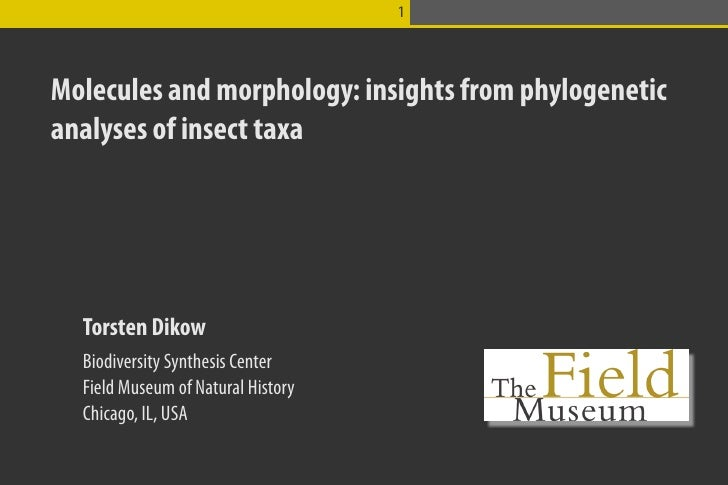 1Molecules and morphology: insights from phylogeneticanalyses of insect taxa  Torsten Dikow  Biodiversity Synthesis Center...