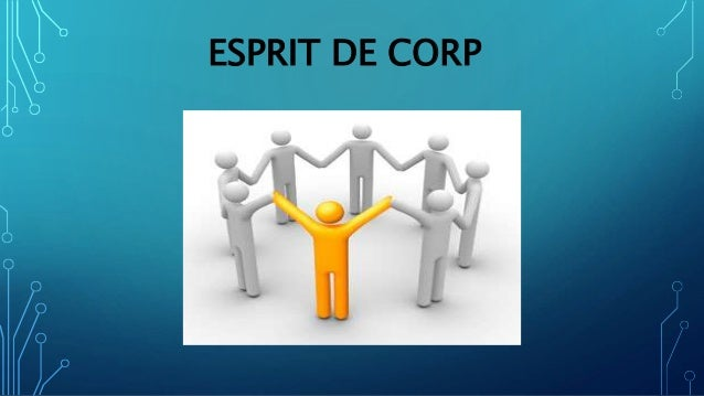 management report esprit Dfj growth led a $20 million series b round in immuta, an emerging disruptive  leader providing data management for data science offering a new way for.