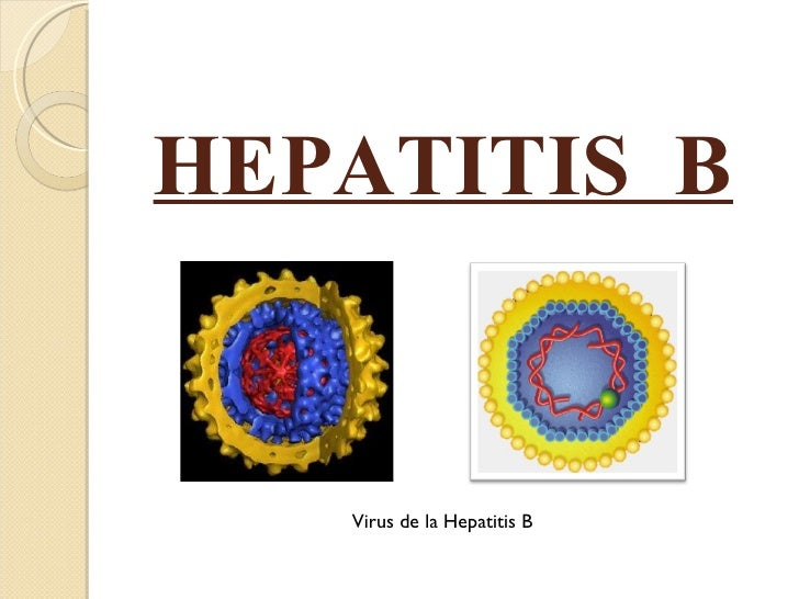 HEPATITIS  B Virus de la Hepatitis B