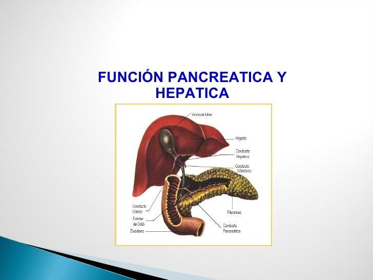 FUNCIÓN PANCREATICA Y HEPATICA