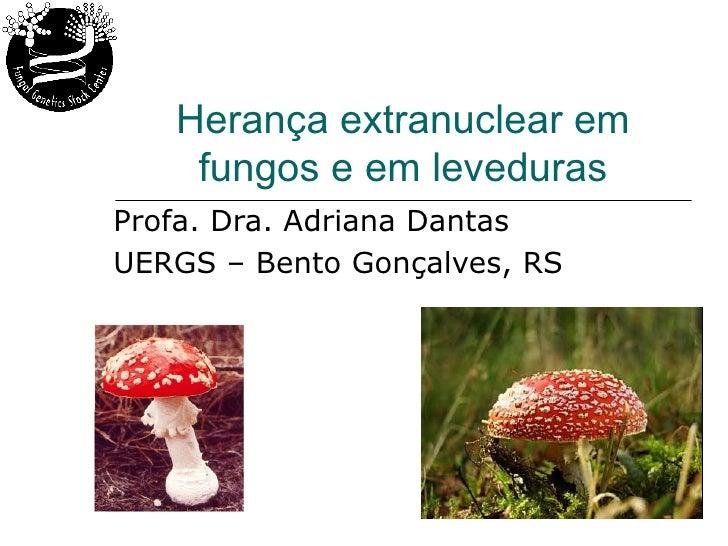 Herança extranuclear em    fungos e em levedurasProfa. Dra. Adriana DantasUERGS – Bento Gonçalves, RS