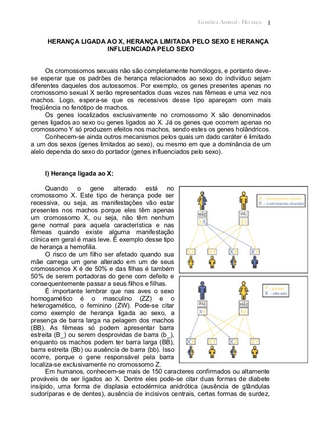 Genética Animal - Herança 1 HERANÇA LIGADA AO X, HERANÇA LIMITADA PELO SEXO E HERANÇA INFLUENCIADA PELO SEXO Os cromossomo...