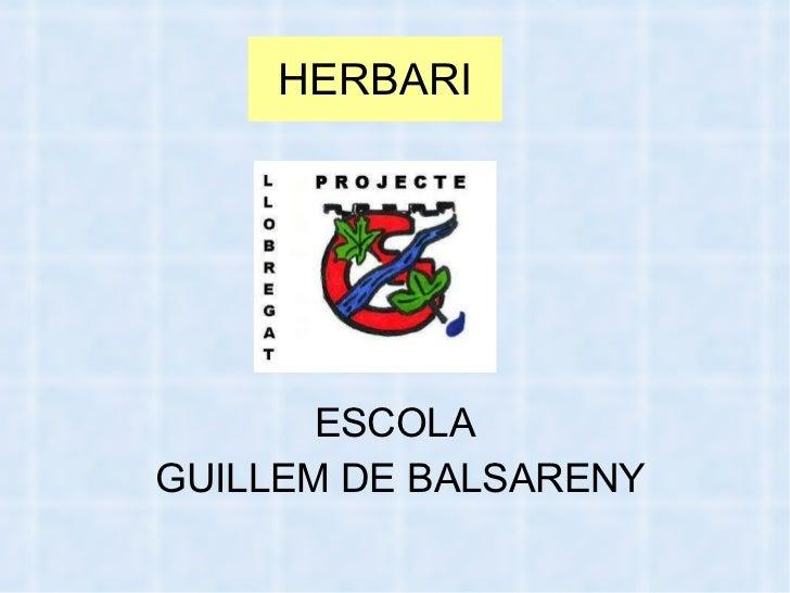 HERBARI <ul><li>ESCOLA  </li></ul><ul><li>GUILLEM DE BALSARENY </li></ul>