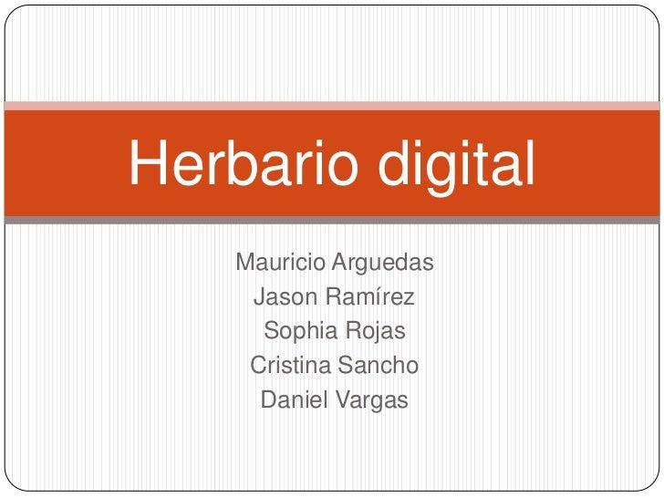 Herbario digital    Mauricio Arguedas     Jason Ramírez      Sophia Rojas     Cristina Sancho      Daniel Vargas