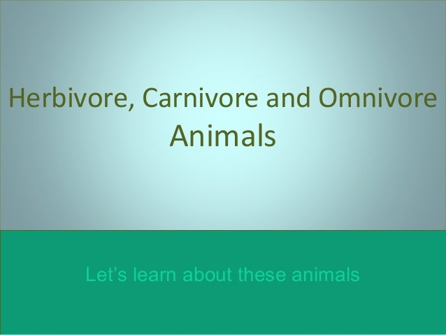 Herbivore, Carnivore and Omnivore  Animals  Let's learn about these animals
