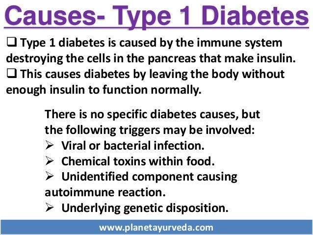 for diabetics type 1, difference bet type 1 and type 2 diabetes