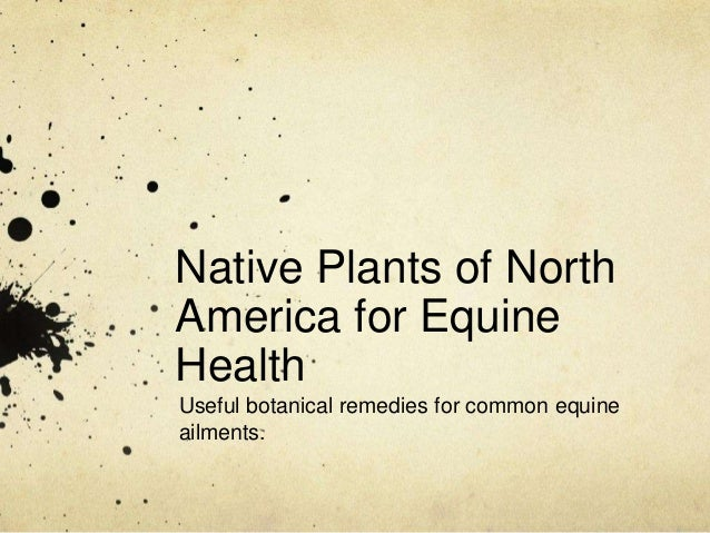 Native Plants of NorthAmerica for EquineHealthUseful botanical remedies for common equineailments.