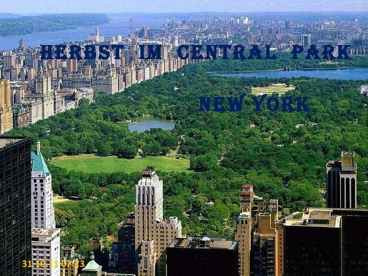 Herbst  im  CENTRAL  PARK NEW YORK 31.10.11   07:22
