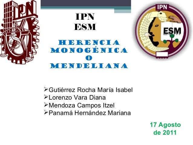 HERENCIA MONOGÉNICA O MENDELIANA IPN ESM Gutiérrez Rocha María Isabel Lorenzo Vara Diana Mendoza Campos Itzel Panamá H...