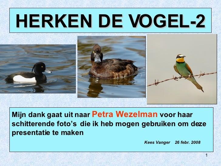 Mijn dank gaat uit naar  Petra Wezelman  voor haar  schitterende foto's  die ik heb mogen gebruiken om deze presentatie te...