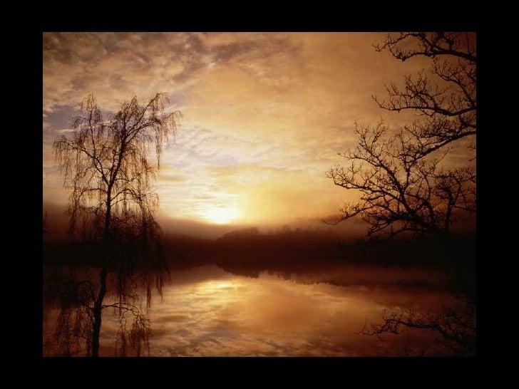 Hermosa naturaleza for Naturaleza hermosa