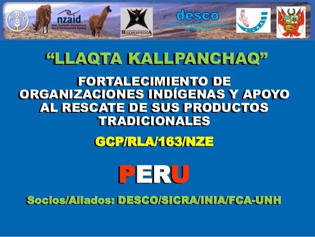 """""""Lllaqta kallpanchaq"""" Fortalecimiento de organizaciones indígenas y apoyo al rescate de sus productos tradicionales"""