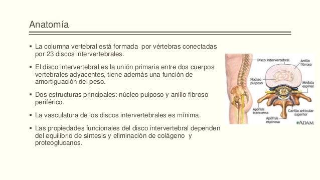 Como evitar el vértigo a sheynom la osteocondrosis