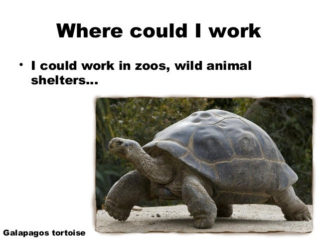 I want to become a Herpetologist?