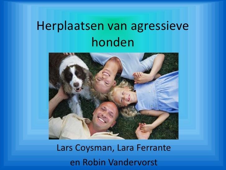 Herplaatsen van agressieve honden<br />Lars Coysman, Lara Ferrante<br />en Robin Vandervorst<br />