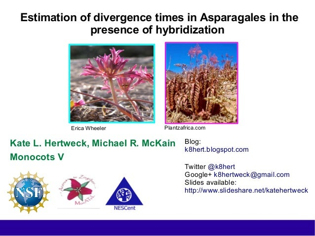 Estimation of divergence times in Asparagales in the presence of hybridization Kate L. Hertweck, Michael R. McKain Monocot...