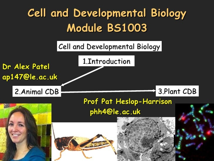 Cell and Developmental Biology Module BS1003 Cell and Developmental Biology 1.Introduction  2.Animal CDB 3.Plant CDB Dr Al...