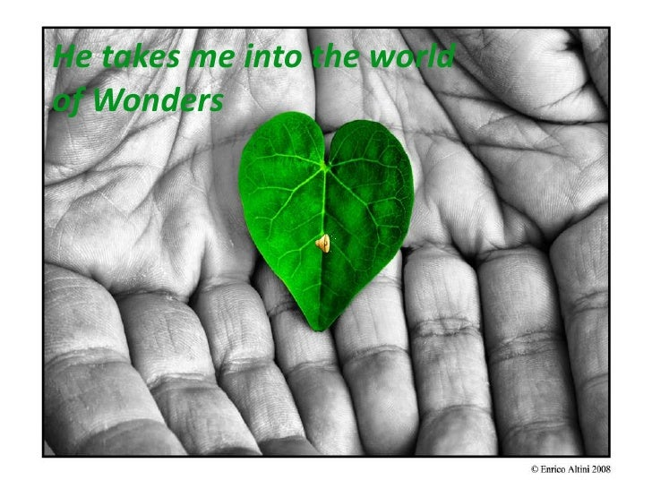 He takes me into the world of Wonders<br />